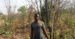 Young Kwara farmer on farm