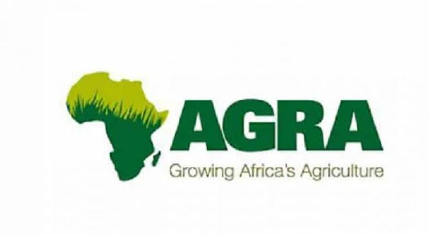 Alliance for a Green Revolution in Africa